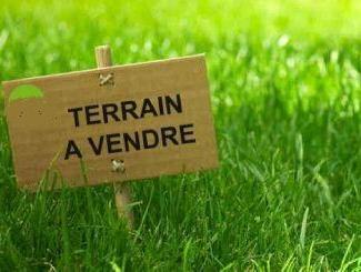 Programme Terrain + Maison Saulnieres
