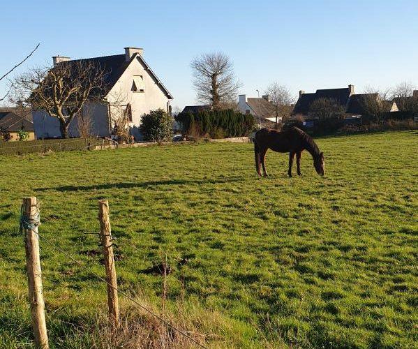 Programme Terrain + Maison Saint-carne